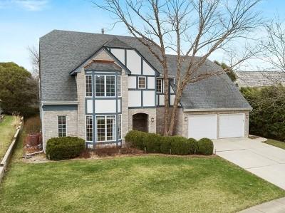 Sugar Grove Single Family Home For Sale: 4 Windwood Drive