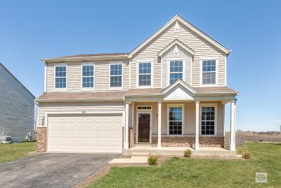 Minooka Single Family Home For Sale: 341 Aster Drive