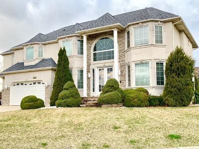 Lemont Single Family Home For Sale: 10750 Christopher Drive