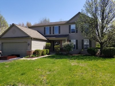 Plainfield Single Family Home For Sale: 25059 Rockwell Lane