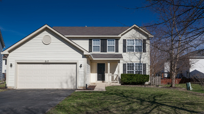 Romeoville Single Family Home For Sale: 217 Troy Court