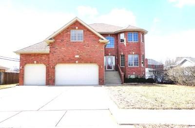 Oak Lawn Single Family Home For Sale: 8756 Meade Avenue