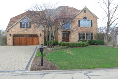 Naperville Rental For Rent: 2442 Rivermist Court