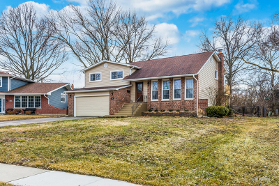 Schaumburg Single Family Home For Sale: 335 Bramble Court