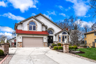 Palos Heights, Palos Hills Single Family Home New: 9536 South 89th Avenue