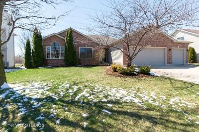 Plainfield Single Family Home For Sale: 13332 Blackstone Lane
