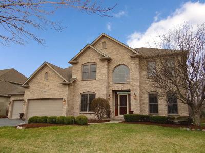 Naperville Single Family Home For Sale: 5520 Bergamot Lane