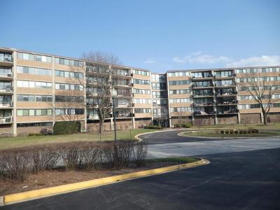 Schaumburg Condo/Townhouse For Sale: 101 Bar Harbour Road #6E