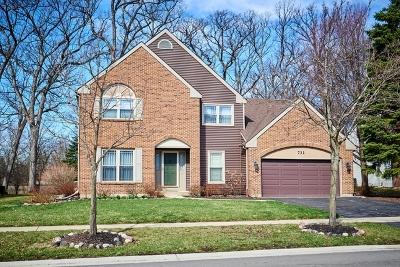 Bartlett Single Family Home For Sale: 731 Red Oak Drive