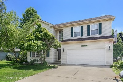 Plainfield Single Family Home For Sale: 24035 Douglas Drive