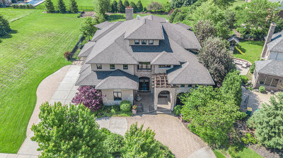 Plainfield Single Family Home For Sale: 24849 Barolo Drive