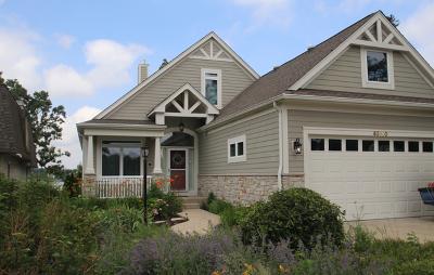 Antioch Single Family Home For Sale: 40600 North Grand Avenue