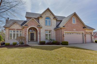 Plainfield Single Family Home Price Change: 26407 Silverleaf Drive