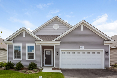 Pingree Grove Single Family Home For Sale: 2351 Cannon Drive