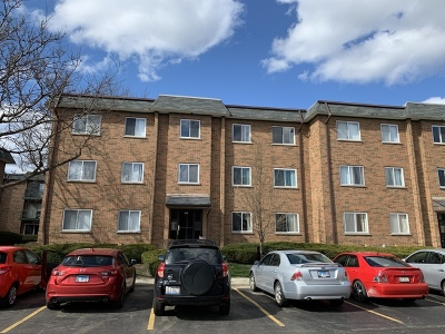 Schaumburg Condo/Townhouse For Sale: 916 Casey Court #5