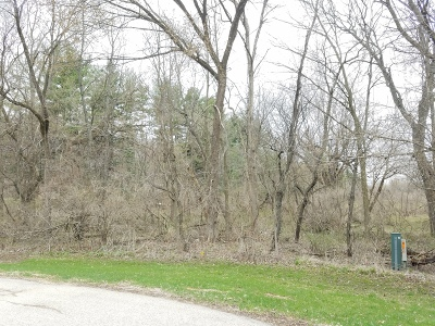 Ogle County Residential Lots & Land For Sale: 000 North Sauk Trail