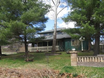 Crete Single Family Home For Sale: 1560 West Broadview Avenue