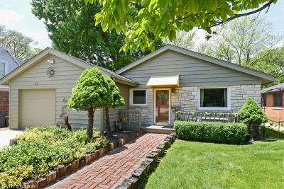 Western Springs Single Family Home For Sale: 4904 Wolf Road
