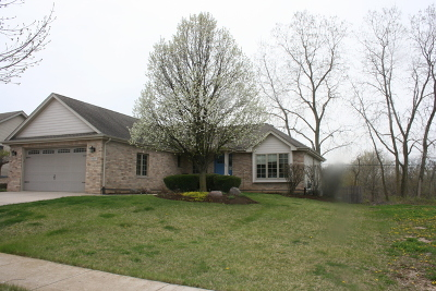 Elwood Single Family Home For Sale: 937 Meadowbrook Road