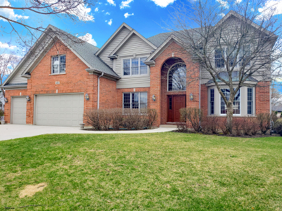 Palatine Single Family Home Contingent: 435 South Winterhaven Court