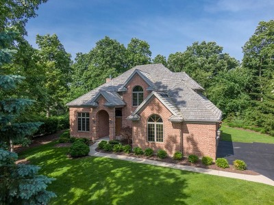 Mundelein Single Family Home For Sale: 28688 North Spyglass Circle