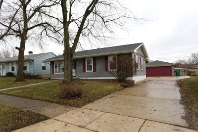 Romeoville Single Family Home For Sale: 430 Kenyon Avenue