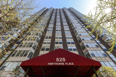 Condo/Townhouse New: 525 West Hawthorne Place #2203