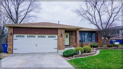 Palos Hills Single Family Home New: 10142 86th Court South