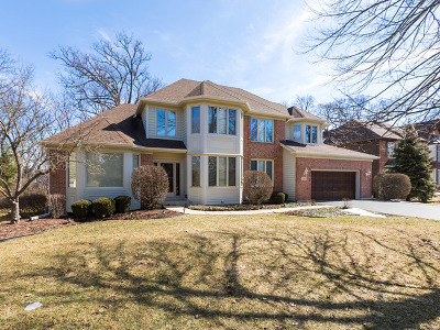West Chicago  Single Family Home For Sale: 1045 Aster Lane