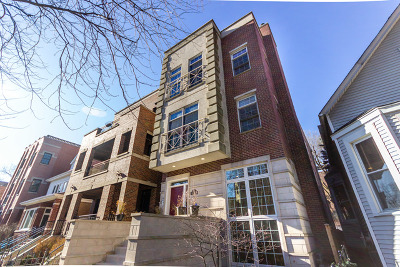 Condo/Townhouse New: 3824 North Greenview Avenue #2
