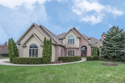 Elgin Single Family Home New: 40w570 Stonecrest Drive
