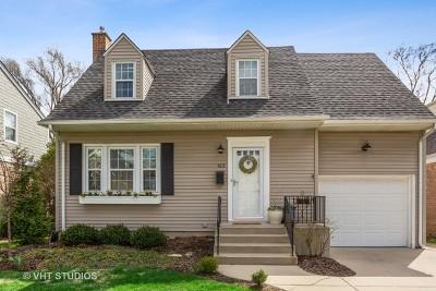 Elmhurst Single Family Home New: 613 South Parkside Avenue