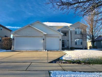 Lockport Single Family Home For Sale: 1221 St Charles Drive