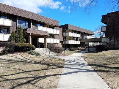 West Dundee Condo/Townhouse For Sale: 435 Cavalier Court #107A