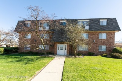 Tinley Park Condo/Townhouse New: 17100 71st Avenue #9