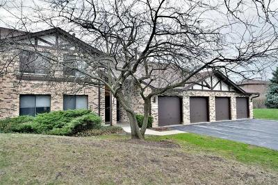 Lisle Condo/Townhouse For Sale: 6270 Trinity Drive #1C