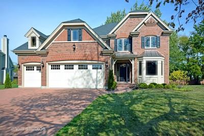 Wheaton Single Family Home For Sale: 25w680 Prairie Avenue