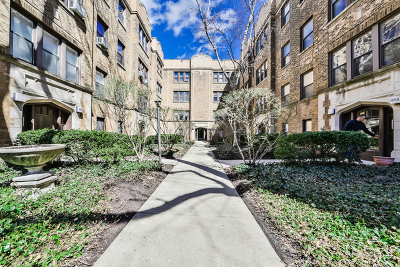 Condo/Townhouse New: 862 West Barry Avenue #2B