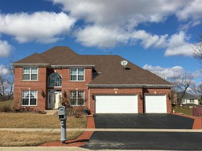 Crystal Lake Single Family Home For Sale: 1210 Village Road