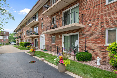 Hickory Hills Condo/Townhouse For Sale: 9420 Greenbriar Drive #2G