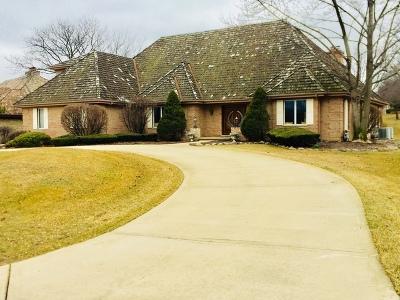 Oak Brook Single Family Home For Sale: 317 Trinity Lane