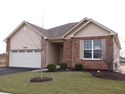 Plainfield Single Family Home For Sale: 13629 Palmetto Drive