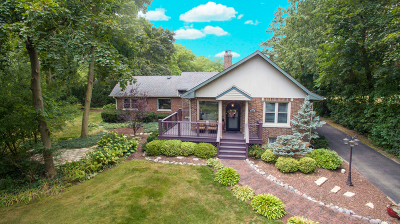 Downers Grove Single Family Home For Sale: 5528 Fairview Avenue