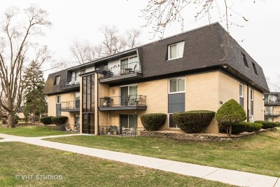 Palos Heights, Palos Hills Condo/Townhouse Contingent: 11104 South 84th Avenue #1B