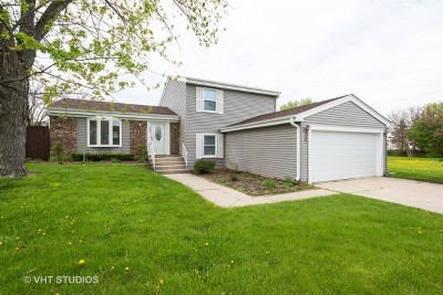 Glendale Heights Single Family Home For Sale: 1907 Scarboro Drive