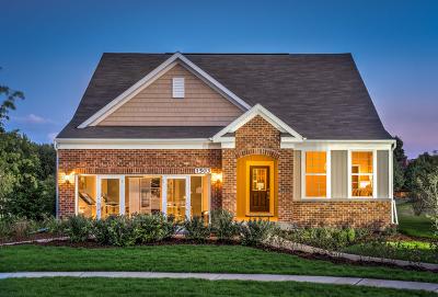 Sugar Grove Single Family Home For Sale: 247 Gillett Street