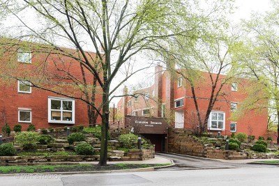 Evanston Condo/Townhouse New: 1215 Central Street #A