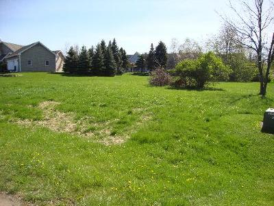 Mc Henry County Residential Lots & Land For Sale: 4 Calais Court