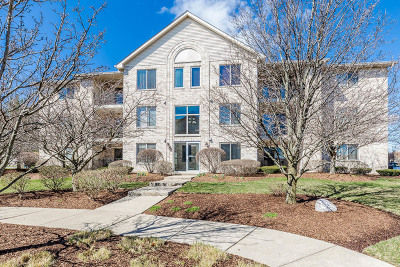 Oak Forest Condo/Townhouse New: 6835 Forestview Drive #3D
