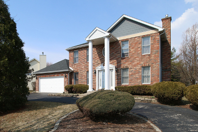 Plainfield Single Family Home For Sale: 13310 South Golden Meadow Drive